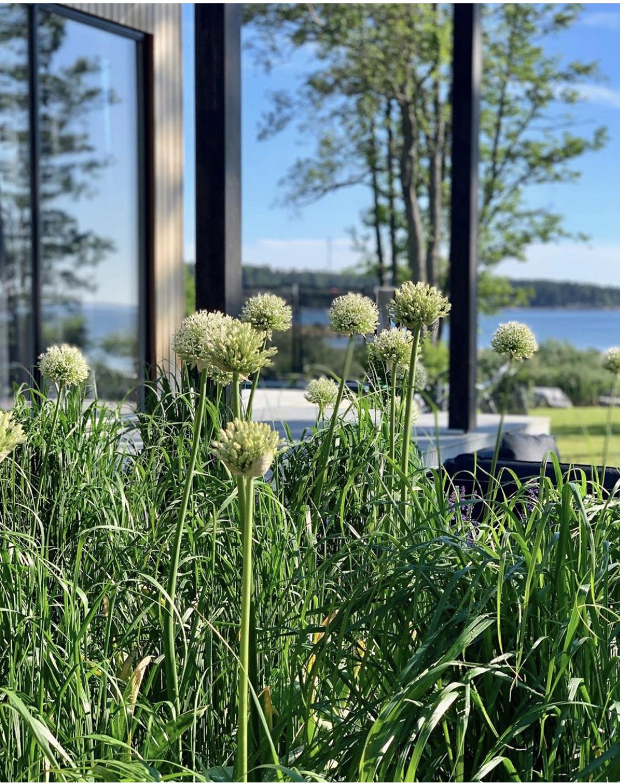 Bengtsson Design I Garden Design Studio